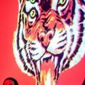 Les Tigres du Futur