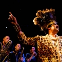 King Khan & the Shrine (Le Connexion Live 14-04-2014)